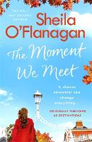 The Moment We Meet: Stories of love,...