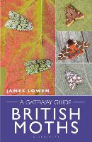 British Moths: A Gateway Guide