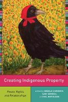 Creating Indigenous Property: Power,...