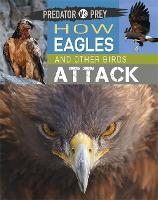 Predator vs Prey: How Eagles and ...