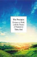 The Precipice: 'A book that seems ...
