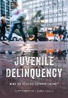 Juvenile Delinquency: Why Do Youths...