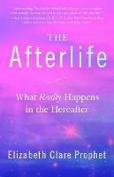 The Afterlife: What Really Happens in...