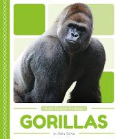 Rain Forest Animals: Gorillas