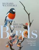 A Brush with Birds: Stories and Art ...