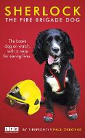Sherlock: The Fire Brigade Dog