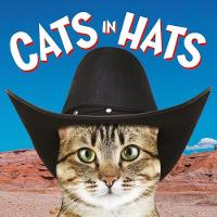 Cats in Hats