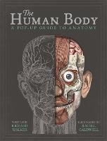 The Human Body: A Pop-Up Guide to...