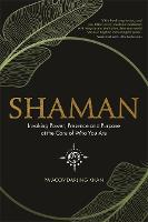 Shaman: Invoking Power, Presence and...