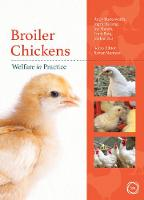Broiler Chickens Welfare in Practice
