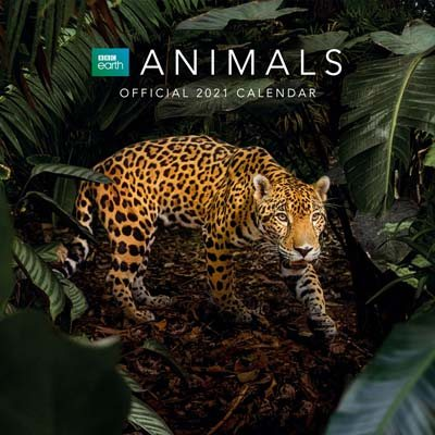 BBC Earth Animals 2021 Calendar 2021