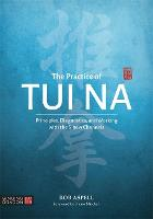 The Practice of Tui Na: Principles,...