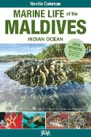 Marine Life of the Maldives - Indian...