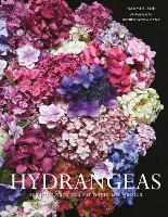 Hydrangeas: Beautiful varieties for...