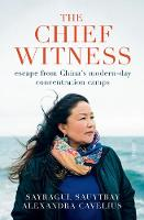 The Chief Witness: escape from ...