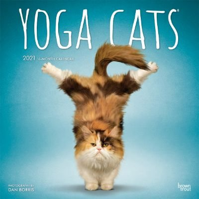 Yoga Cats Wall Calendar 2021