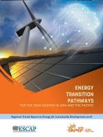 Energy transition pathways for the...