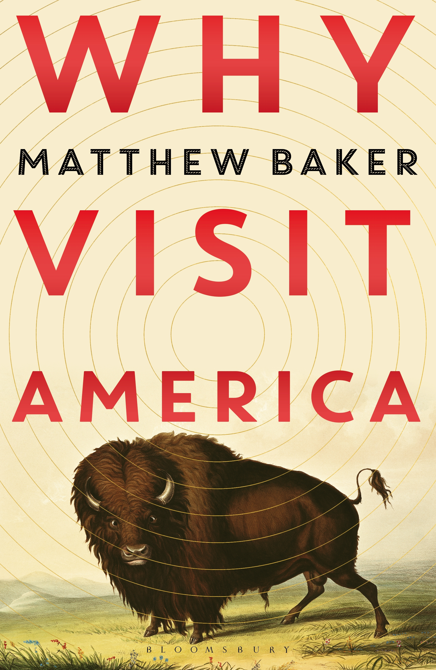 Signed Edition - Why Visit America