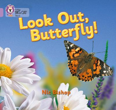 Look Out Butterfly!: Band 00/Lilac (Collins Big Cat)