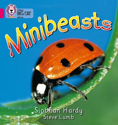 Minibeasts: Band 01A/Pink A (Collins Big Cat)