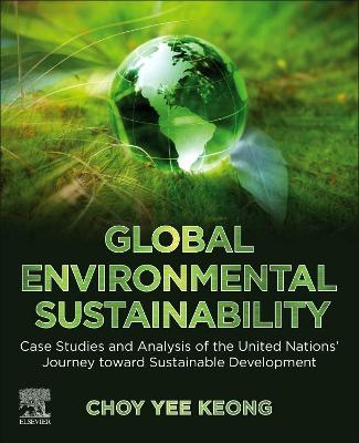 Global Environmental Sustainability: Case Studies and Analysis of the UN's Journey toward Sustainable Development