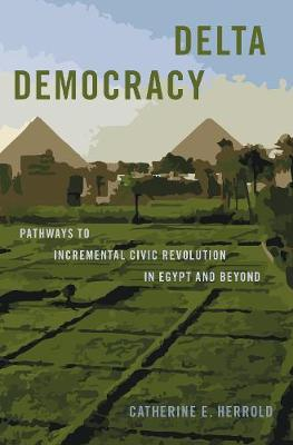 Delta Democracy: Pathways to Incremental Civic Revolution in Egypt and Beyond