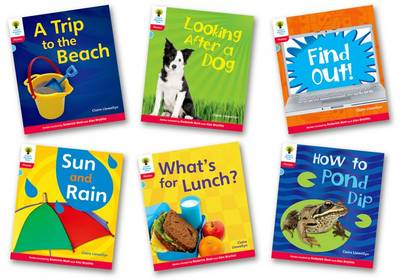 Oxford Reading Tree: Stage 4: Floppy's Phonics Non-fiction: Pack of 6