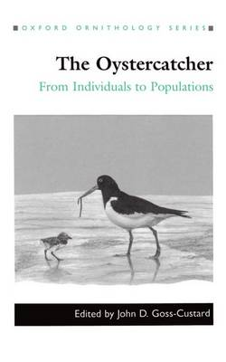 The Oystercatcher: From Individuals to Populations