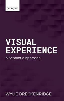 Visual Experience: A Semantic Approach