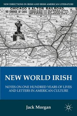 New World Irish: Notes on One Hundred Years of Lives and Letters in American Culture