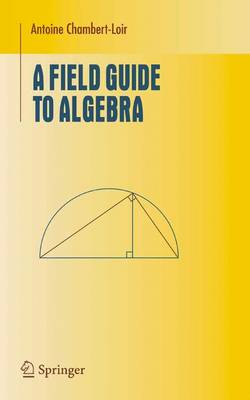 A Field Guide to Algebra