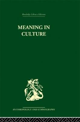 Meaning in Culture