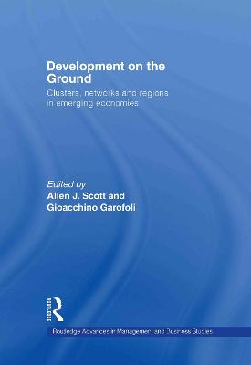 Development on the Ground: Clusters, Networks and Regions in Emerging Economies