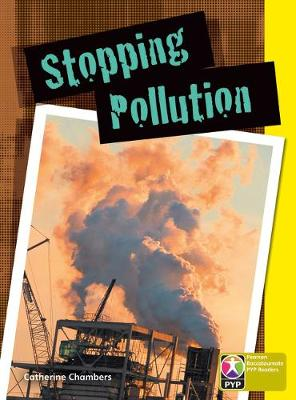 PYP L9 Stopping Pollution single