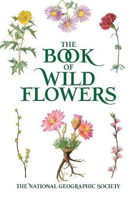 Book of Wild Flowers: Color Plates of 250 Wild Flowers and Grasses