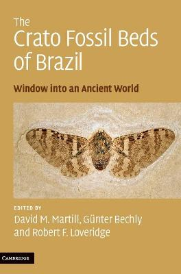 The Crato Fossil Beds of Brazil: Window into an Ancient World