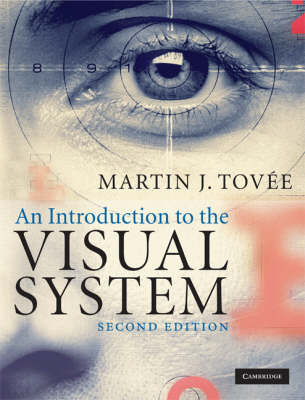 An Introduction to the Visual System