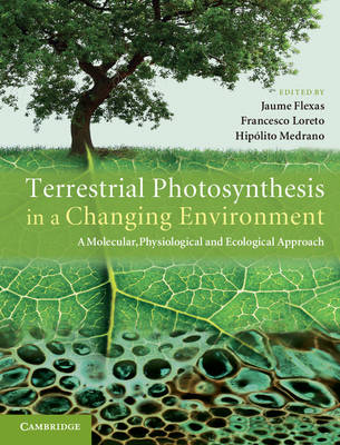 Terrestrial Photosynthesis in a Changing Environment: A Molecular, Physiological, and Ecological Approach