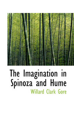 The Imagination in Spinoza and Hume