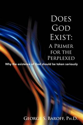 Does God Exist: A Primer for the Perplexed: Why the Existence God Should Be Taken Seriously