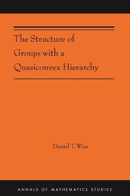 The Structure of Groups with a Quasiconvex Hierarchy: (AMS-209)