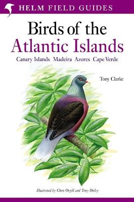 A Field Guide to the Birds of the Atlantic Islands: Canary Islands, Madeira, Azores, Cape Verde