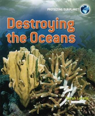 Protecting Our Planet: Destroying the Oceans