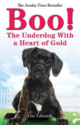 Boo!: The Underdog With a Heart of Gold