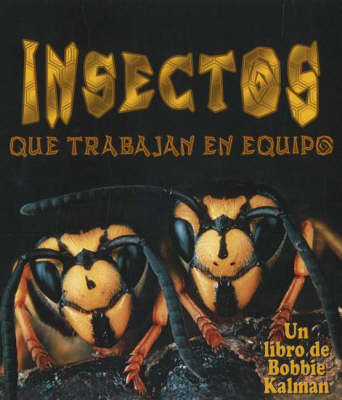 Insectos Que Trabajan En Equipo (Insects That Work Together)