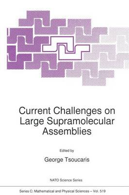 Current Challenges on Large Supramolecular Assemblies: Proceedings of the NATO Advanced Research Workshop, Athens, Greece, 31 October-5 November 1997