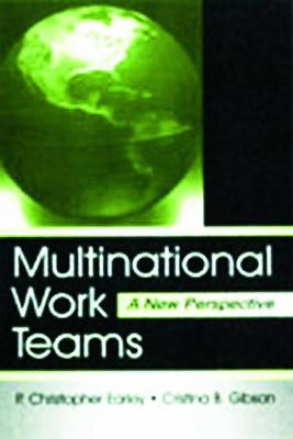 Multinational Work Teams: A New Perspective