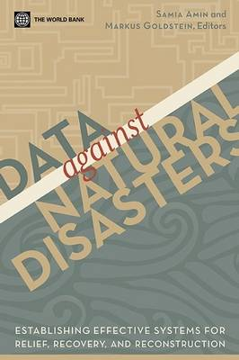 Data Against Disasters: Establishing Effective Systems for Relief, Recovery, and Reconstruction