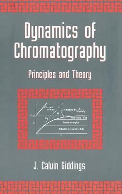 Dynamics of Chromatography: Principles and Theory