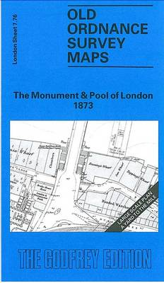 Monument and Pool of London 1873: London Large Scale 07.76